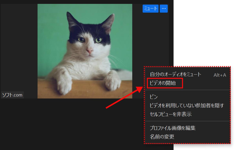 Zoomでビデオのオン・オフを切り替える3